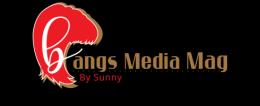 LOGO.BANGS MEDIA